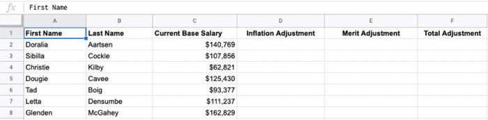 Use Google Sheets during your annual comp review to easily look analyze salary adjustments.